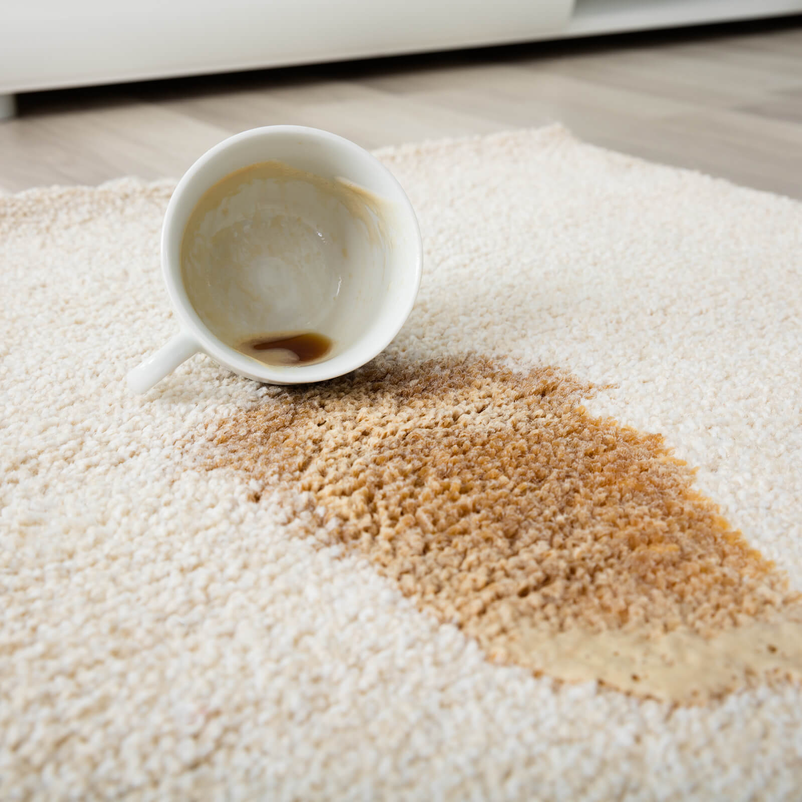 Professional Rug Cleaning   Carpets And More, Inc