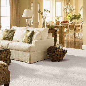 White carpet for living room | Carpets And More, Inc