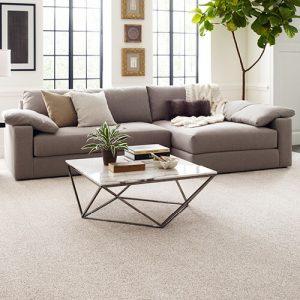 Comfortable carpet | Carpets And More, Inc