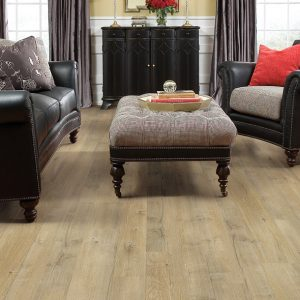 Shaw Castle Ridge | Carpets And More, Inc