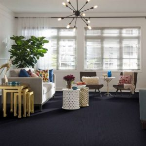 Shaw Sleek Look Harbor Point | Carpets And More, Inc