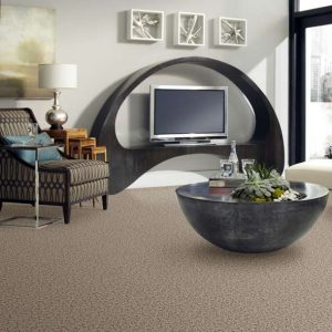 Shaw Sophisticated Space | Carpets And More, Inc